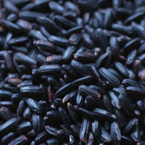 China Black Rice - 10.0 lbs