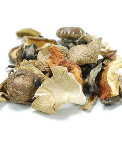 Forest Mix Mushrooms Dried - 454g