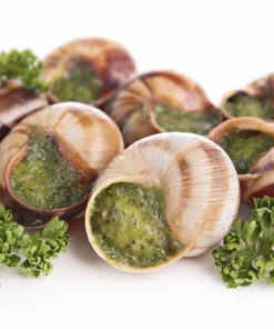 French Burgundy Snails - Can 800g (without shell)