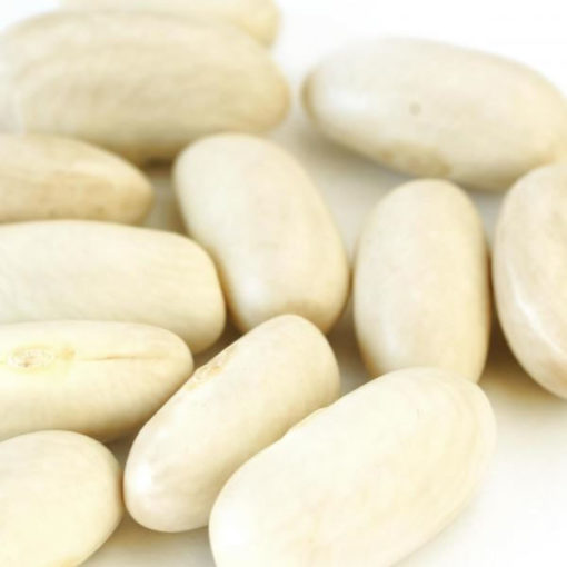 Cannellini Beans - 10.0 lbs
